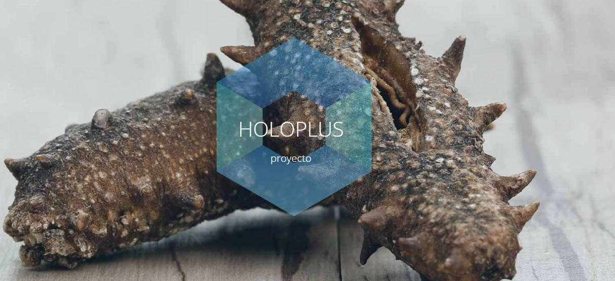 cabecera-holoplus.jpg