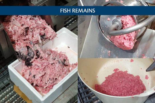 jm-301-producto-fishremains-eng-2
