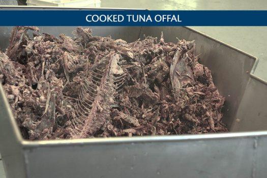 jm-301-producto-tuna-eng-1