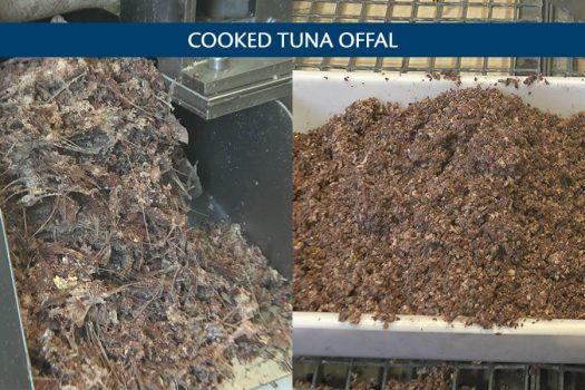 jm-301-producto-tuna-eng-2