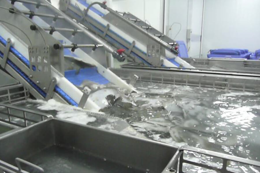 5a-jm-127-tolva-alimentación-acumulacion-sistema-lavado-5