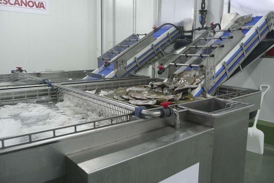 5a-jm-127-tolva-alimentación-acumulacion-sistema-lavado