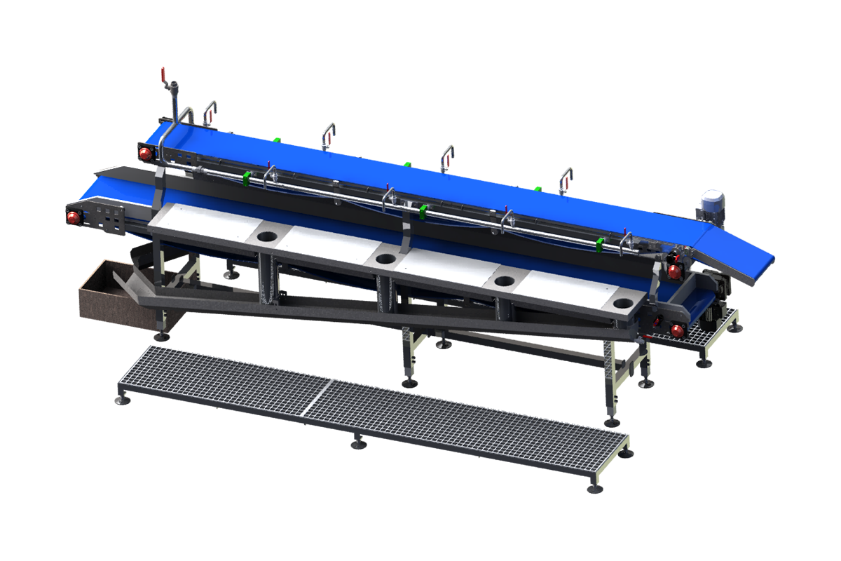 Fish fillet trimming, inspection and control system with two conveyors