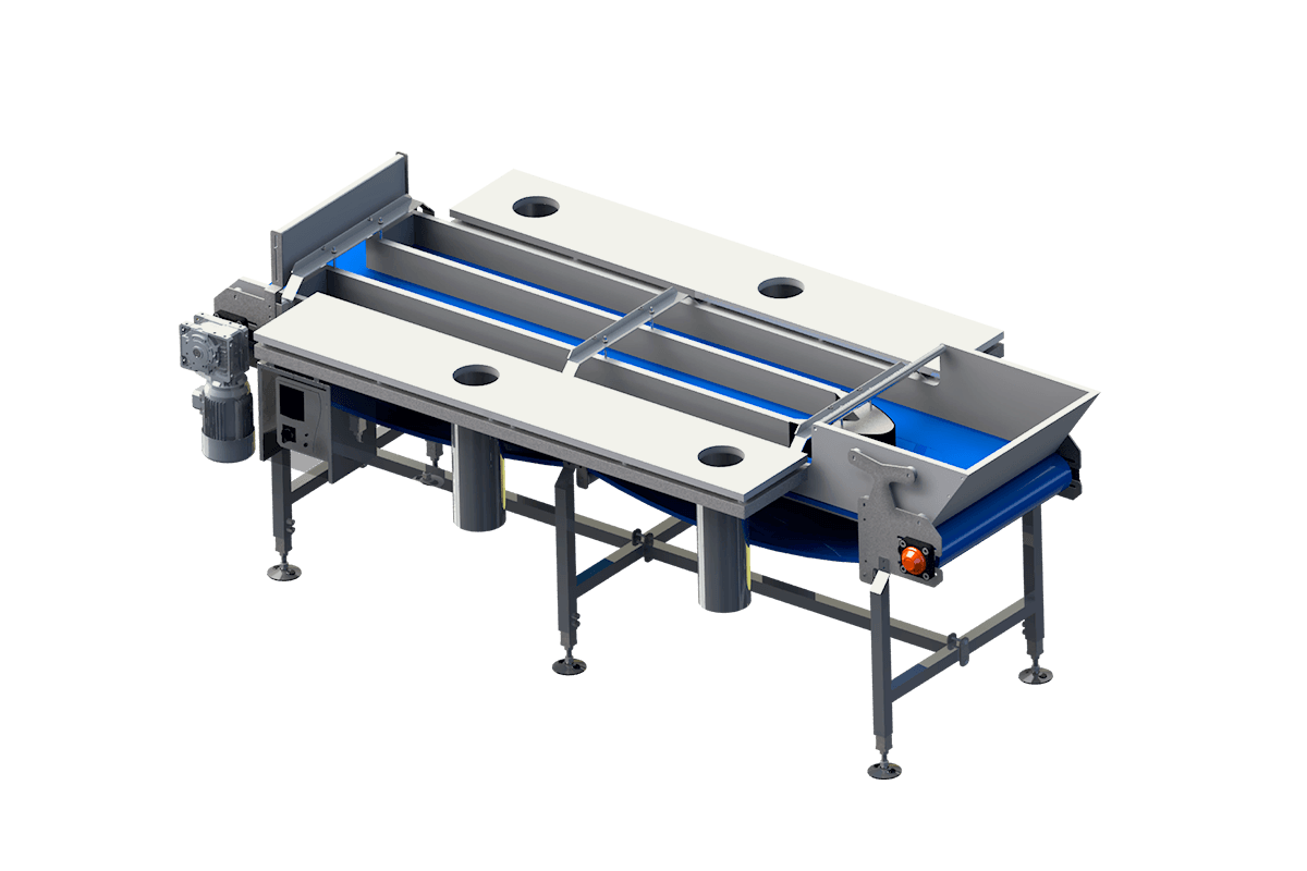 Manual fish fillet trimming system with multi-lane conveyor