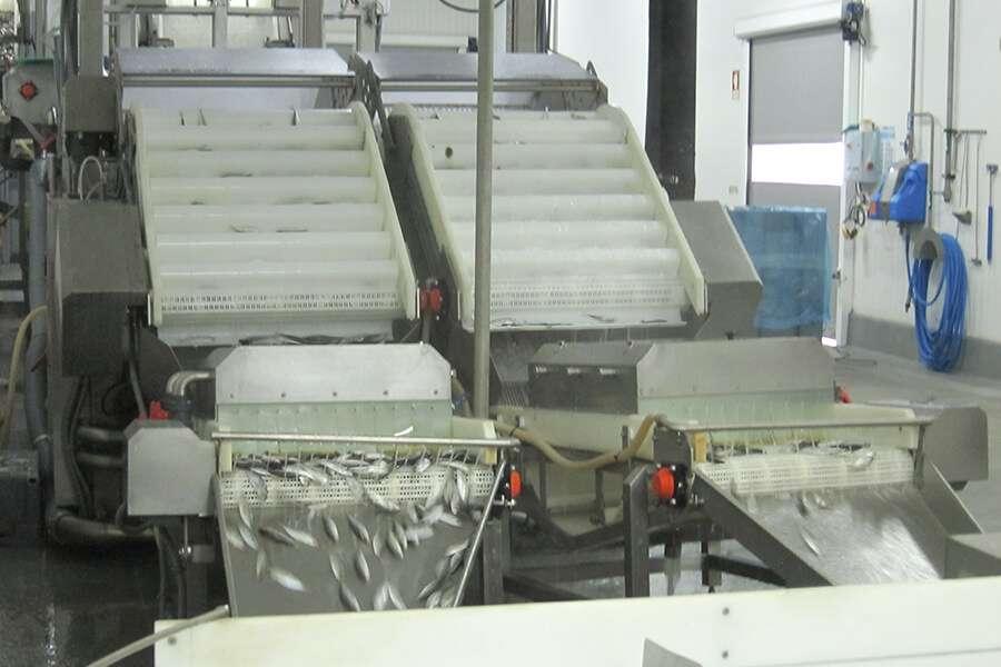 11-jm-086-congelador-salmuera-3